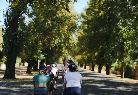 Road Skills Clinic - Level 1 - Bike Handling & Bunch Riding - Albert Park - 16th July