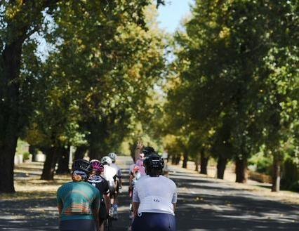 Road Skills Clinic - Level 1 - Bike Handling & Bunch Riding - ALBERT PARK - 28th Oct