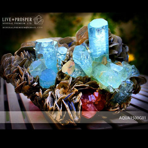 Sky Blue aquamarine Island with Pink Apatite 9 020 CT on Muscovite