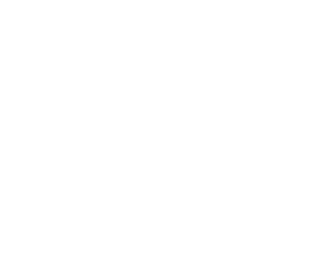 Honey Bean Farm