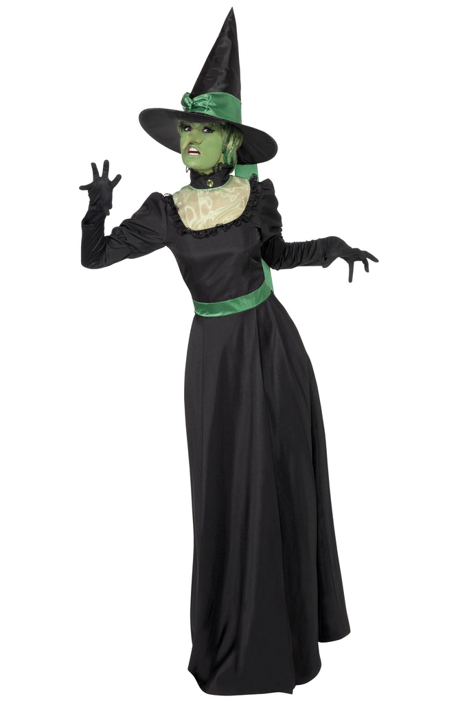 Witch Costume - Wicked