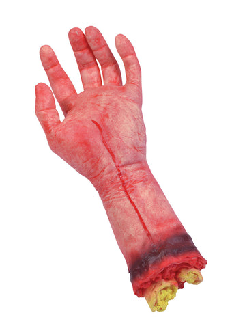 Severed Limb - Hand
