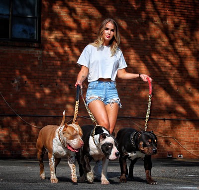 RECEIVE $50 OFF LARGE COLLARS