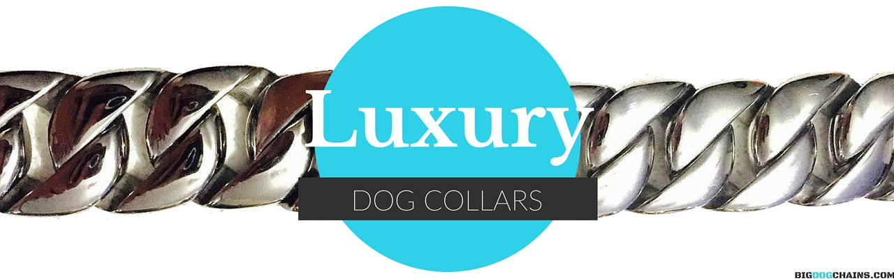 Luxury Dog Collar - BIG DOG CHAINS