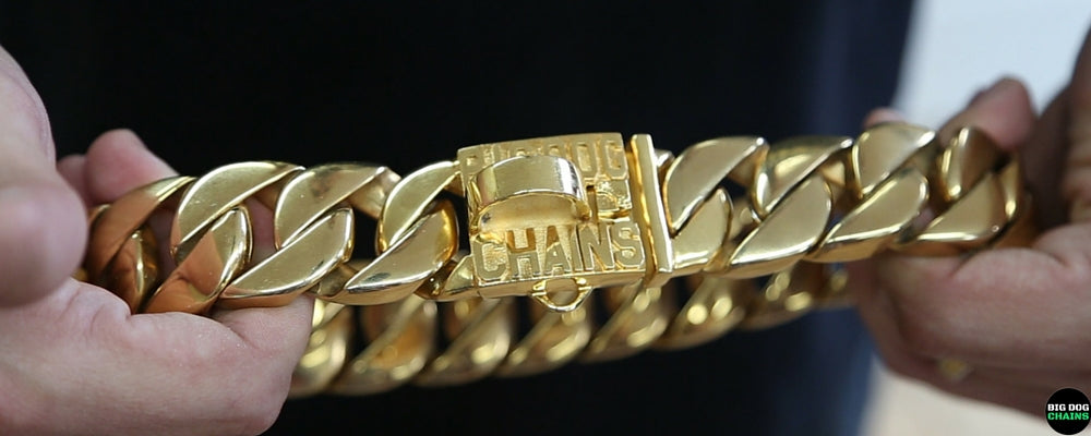 Unique Gold Dog Collar - BIG DOG CHAINS