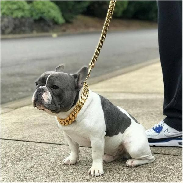Cuban Dog Collar and Leash Set - BIG DOG CHAINS