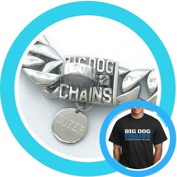 Polished Dog ID Tag & T-Shirt