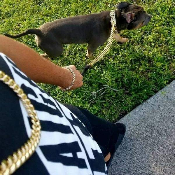 Gold Leash and Custom Dog Collar Combo the Best Deal for a Luxury Cuban Link Collar Lead Set for your Strong and Large Dog - BIG DOG CHAINS
