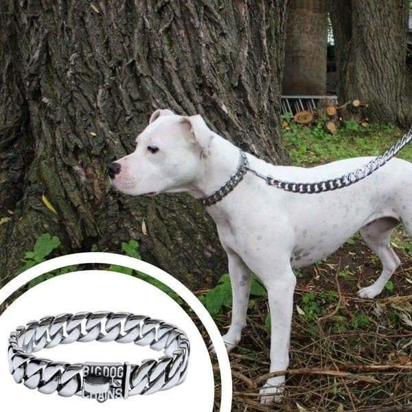Large Cuban Link Dog Collar and Leash Stainless Steel Strong Fashionable Dog Collars and Luxury Leads - BIG DOG CHAINS