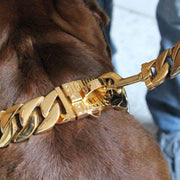 MIDAS DOG COLLAR & KILO LEASH