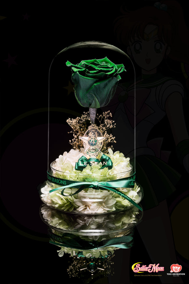 Sailor Moon Special Edition - Jupiter