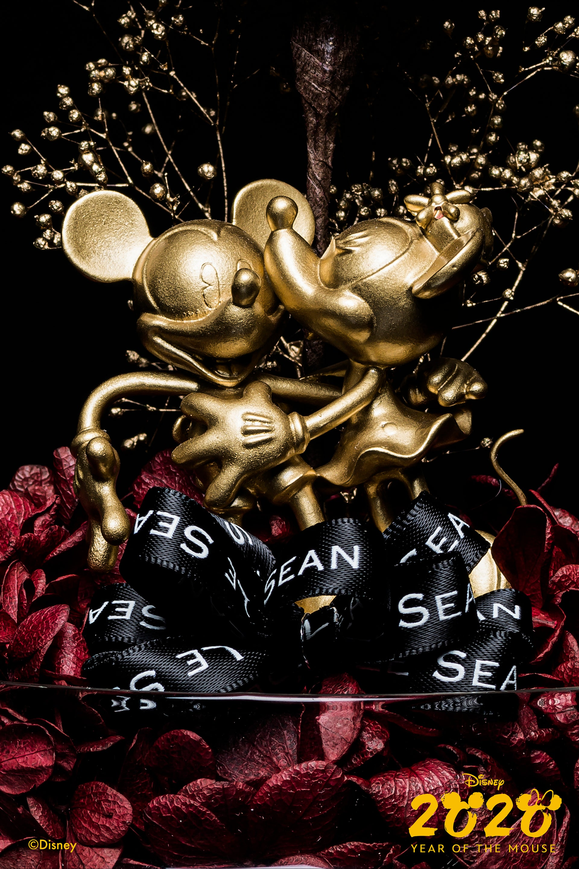 Disney Special Edition - Mickey & Minnie (Year Of The Mouse Edition)
