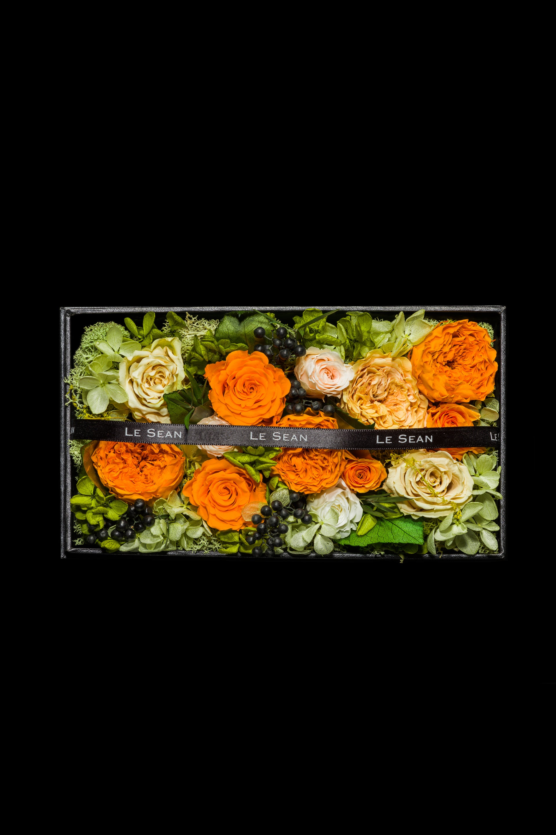 Wonderland - Garden Rose Tangerine Orange