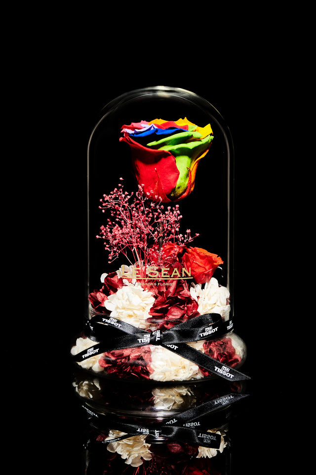 LE SEAN x TISSOT Exquisite Rainbow Rose Limited Edition Box Set