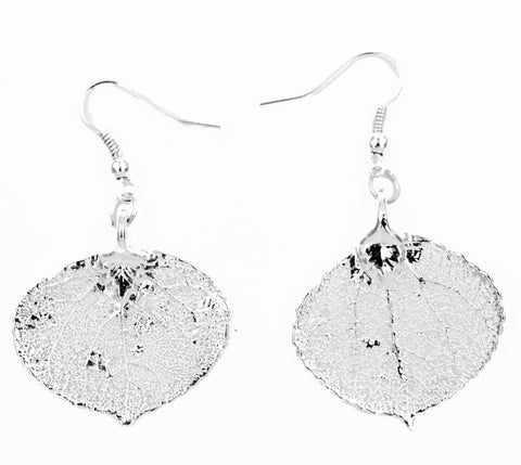 Real Leaf Hook Drop Earrings ASPEN Dipped in Silver - Zhannel  - 1