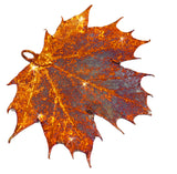 Real Leaf PENDANT Sugar Maple in Copper Genuine Leaf - Zhannel  - 2
