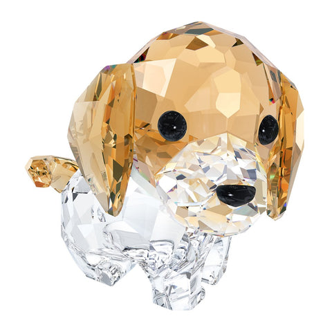 Swarovski Color Crystal Figurine LOVLOT Puppy MAX THE BEAGLE #5063329