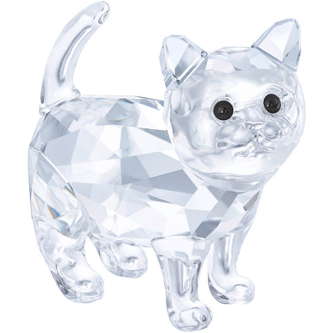 Swarovski Crystal Animal Figurine KITTEN, Clear- 5269815
