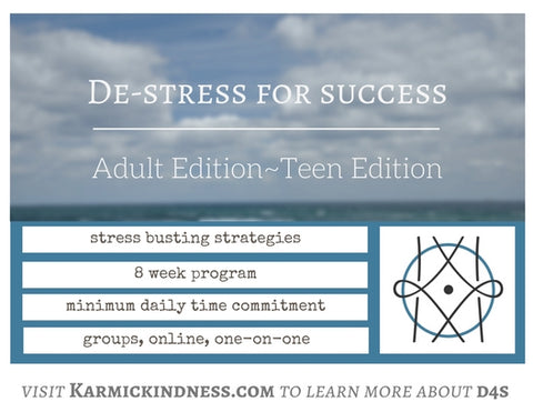 De-Stress for Success Program (Pre-Registration)