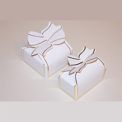 Elegant Bow Boxes