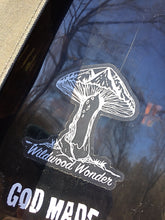 Load image into Gallery viewer, Wildwood Wonder Decal