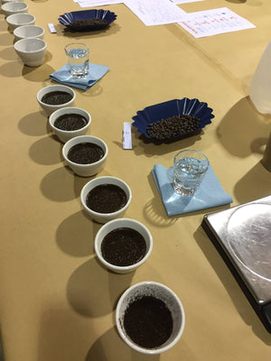 Erie Coffee Roaster's First Public Tasting Coming April 2nd!
