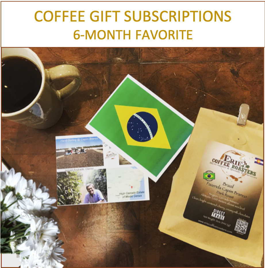 6 Month Coffee Club Gift Subscription: Our Most Popular