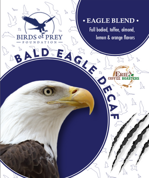 Birds of Prey Foundation: Bald Eagle Decaf