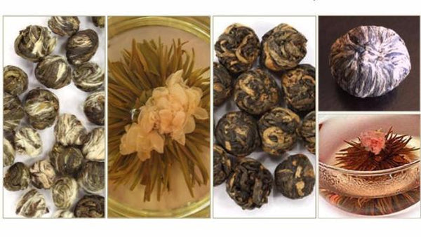 Presentation Tea Sample Pack: Wonderful Gift Idea!