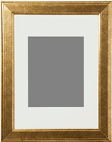 "Gold matted 8"" x 10"" frame from Ikea"
