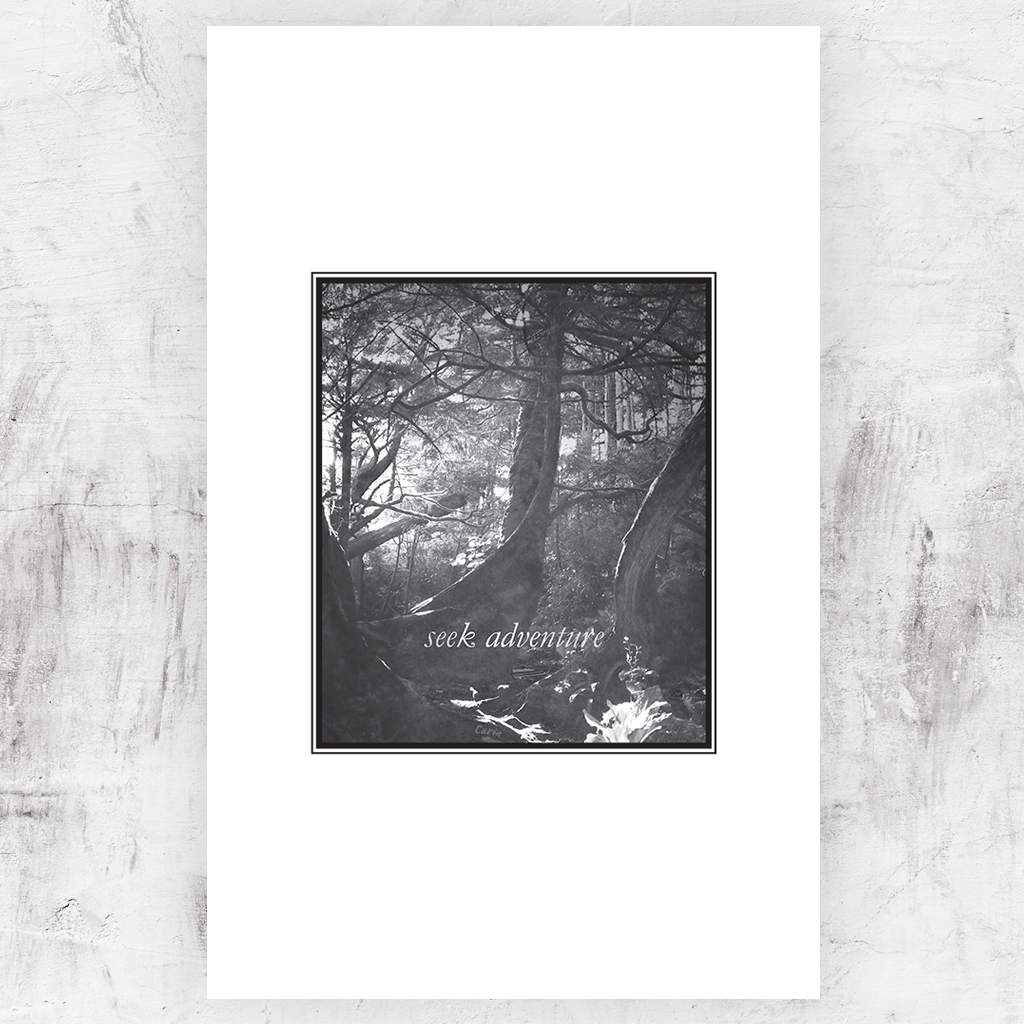 "Black and white print of a forest with light shining through the trees. Title reads ""seek adventure"" and you can personalize this print with your name in the roots of the trees."