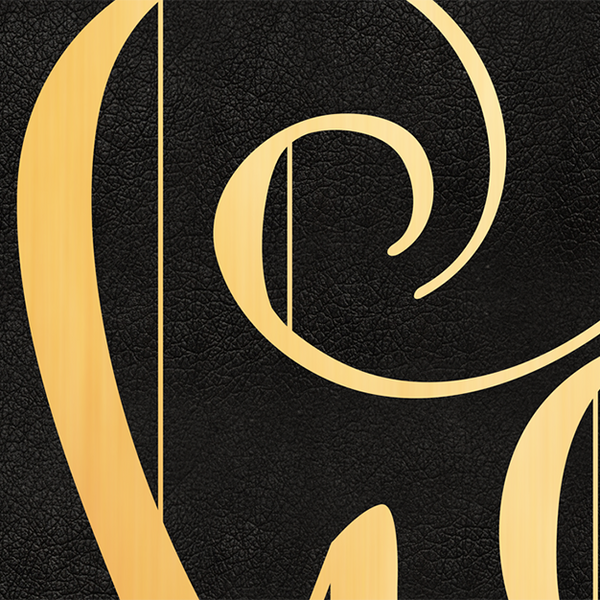 Detail image of the black leather texture behind the gold lettering
