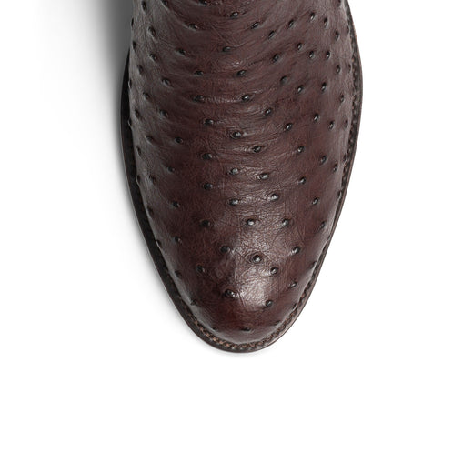 Chocolate Ostrich-toe