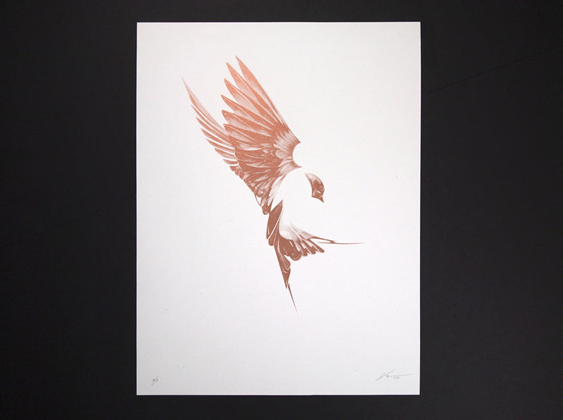 Flight 02 Copper Edition by London based artist Von. www.shopvon.com HelloVon