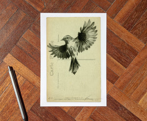 'Flight Vintage Postcard 05' Mini Edition