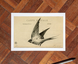 'Flight Vintage Postcard 07' Mini Edition