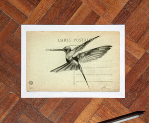 'Flight Vintage Postcard 08' Mini Edition