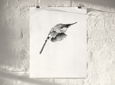 Bird 14   ( Giclee Print ) by London based artist Von  — ShopVon |  HelloVon - 1