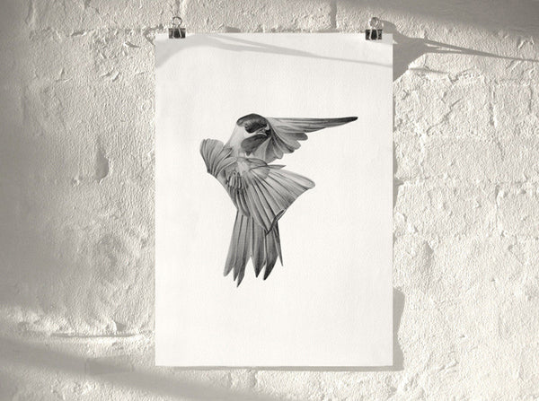 Bird 01   ( Giclee Print ) by London based artist Von  — ShopVon |  HelloVon - 1