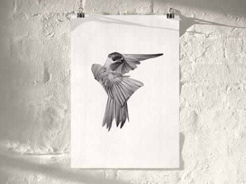 Bird 01 ( Giclee Print ) by London artist Von — www.shopvon.com