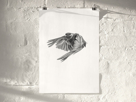Bird 02 ( Giclee Print ) by London artist Von — www.shopvon.com
