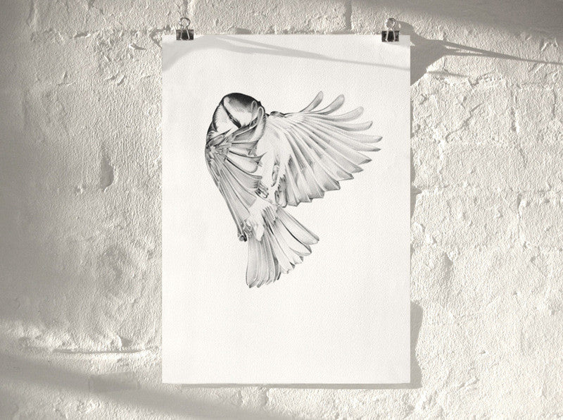 Bird 04 ( Giclee Print ) screen prints and original art by London artist Von — www.shopvon.com