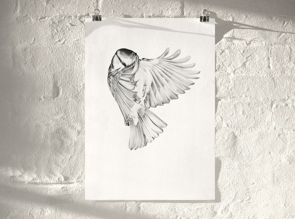 Bird 04   ( Giclee Print ) by London based artist Von  — ShopVon |  HelloVon - 1