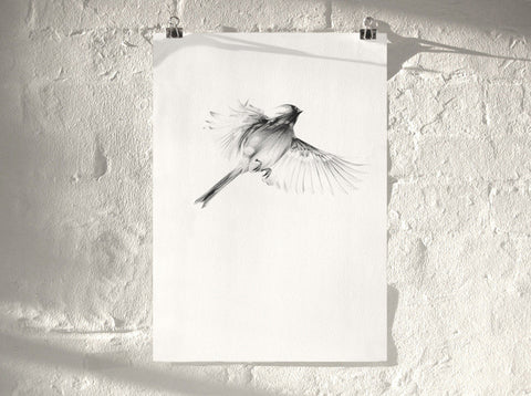 Bird 08 ( Giclee Print ) by London artist Von — www.shopvon.com