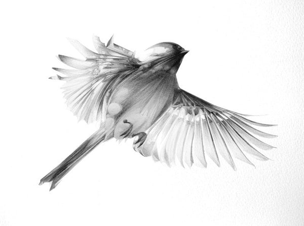 Bird 08   ( Giclee Print ) by London based artist Von  — ShopVon |  HelloVon - 2