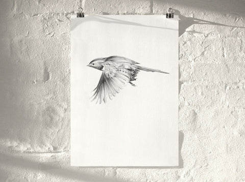 Bird 10   ( Giclee Print ) by London based artist Von  — ShopVon |  HelloVon - 1