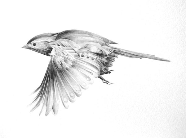 Bird 10   ( Giclee Print ) by London based artist Von  — ShopVon |  HelloVon - 2
