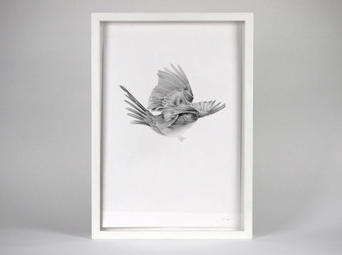 Bird 11  [2010] ( Original Art ) by London artist Von — www.shopvon.com
