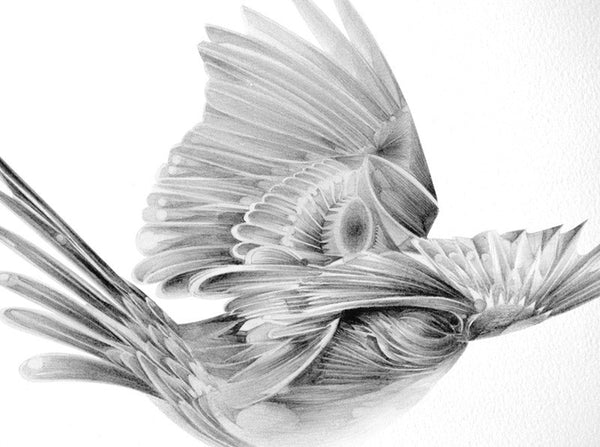Bird 11  [2010]   ( Original Art ) by London based artist Von  — ShopVon |  HelloVon - 2