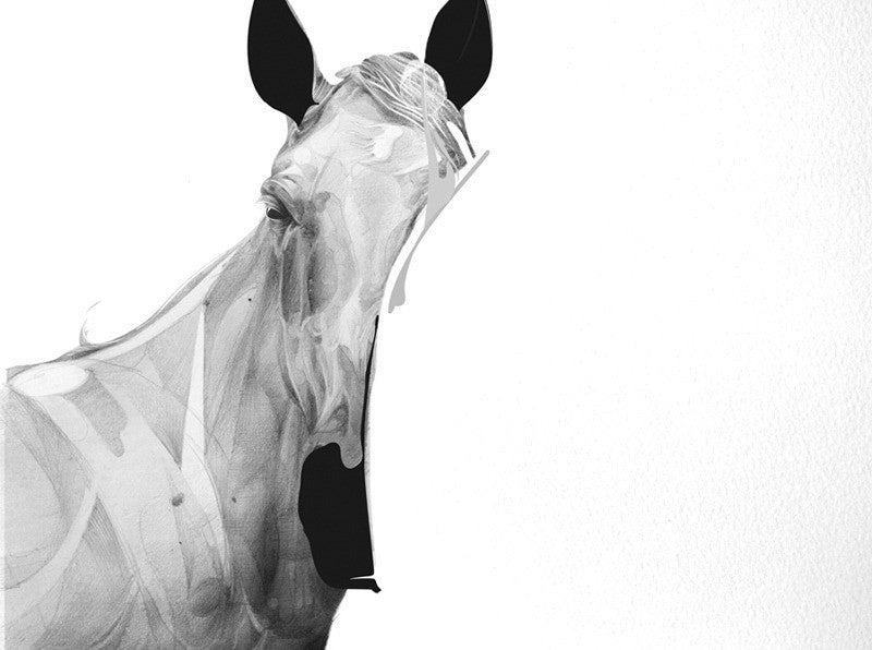 Horse 01 (  ) screen prints and original art by London artist Von — www.shopvon.com